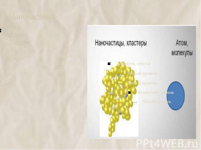 Наночастицы В живых организмах металлы существуют в виде кластеров- объединения сравнительно небольшого числа атомов, размер которых меньше 5-10 нм. Обычно в нанокластере содержится до 1000атомов.