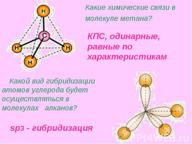 Какие химические связи в молекуле метана? Какой вид гибридизации атомов углерода будет осуществляться в молекулах алканов?