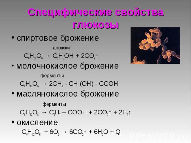 спиртовое брожение спиртовое брожение дрожжи C6Н12O6 → С2Н5ОН + 2СО2↑ молочнокислое брожение ферменты C6Н12O6 → 2СН3 - СН (ОН) - СООН маслянокислое брожение ферменты C6Н12O6 → С3Н7 – СООН + 2СО2↑ + 2Н2↑ окисление C6Н12O6 + 6О2 → 6СО2↑ + 6Н2О + Q