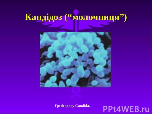 """Кандідоз (""""молочниця"""")"""