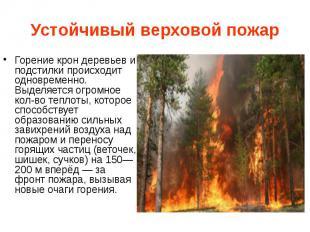 Устойчивый верховой пожар Горение крон деревьев и подстилки происходит одновреме