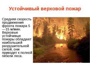 Устойчивый верховой пожар Средняя скорость продвижения фронта пожара 5—15 м/мин.