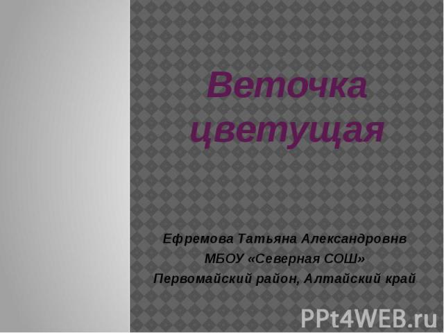 Веточка цветущая Ефремова Татьяна Александровнв МБОУ «Северная СОШ» Первомайский район, Алтайский край