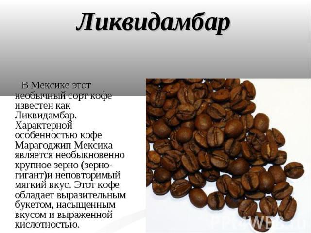 Ликвидамбар В Мексике этот необычный сорт кофе известен как Ликвидамбар. Характерной особенностью кофе Марагоджип Мексика является необыкновенно крупное зерно (зерно-гигант)и неповторимый мягкий вкус. Этот кофе обладает выразительным букетом, насыще…