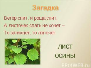Ветер спит, и роща спит, Ветер спит, и роща спит, А листочек спать не хочет – То