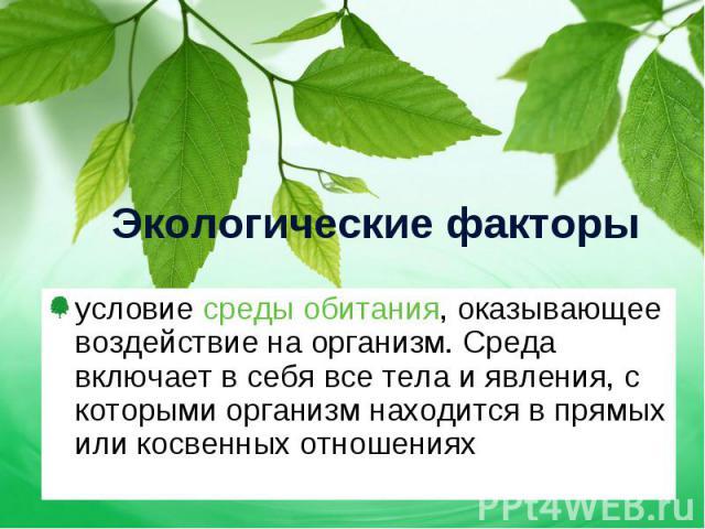 условие среды обитания, оказывающее воздействие на организм. Среда включает в себя все тела и явления, с которыми организм находится в прямых или косвенных отношениях условие среды обитания, оказывающее воздействие на организм. Среда включает в себя…