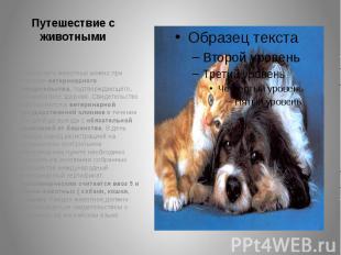 Путешествие с животными Перевозить животных можно при наличии ветеринарного свид