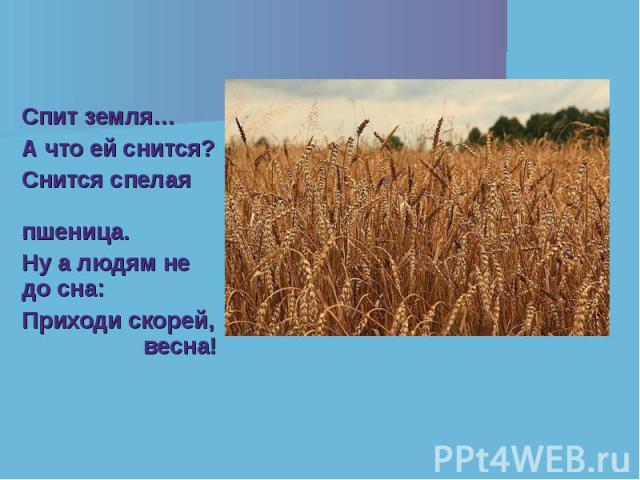 Спит земля… Спит земля… А что ей снится? Снится спелая пшеница. Ну а людям не до сна: Приходи скорей, весна!