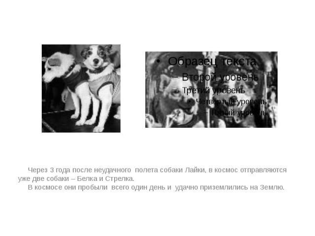 Через 3 года после неудачного полета собаки Лайки, в космос отправляются уже две собаки – Белка и Стрелка. Через 3 года после неудачного полета собаки Лайки, в космос отправляются уже две собаки – Белка и Стрелка. В космосе они пробыли всего один де…