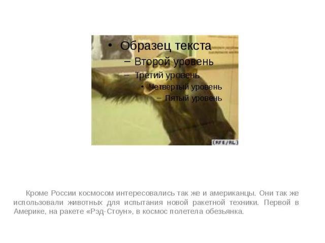 Кроме России космосом интересовались так же и американцы. Они так же использовали животных для испытания новой ракетной техники. Первой в Америке, на ракете «Рэд-Стоун», в космос полетела обезьянка. Кроме России космосом интересовались так же и амер…