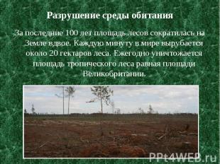 Разрушение среды обитания За последние 100 лет площадь лесов сократилась на Земл
