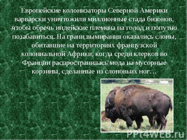 Европейские колонизаторы Северной Америки варварски уничтожили миллионные стада бизонов, чтобы обречь индейские племена на голод и попутно позабавиться. На грани вымирания оказались слоны, обитавшие на территориях французской колониальной Африки, ко…