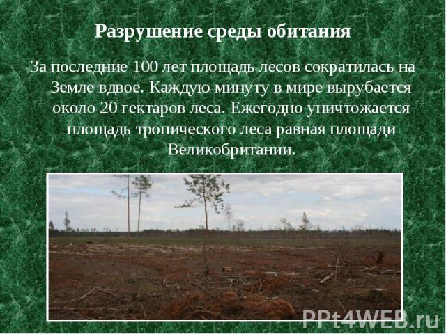Разрушение среды обитания За последние 100 лет площадь лесов сократилась на Земле вдвое. Каждую минуту в мире вырубается около 20 гектаров леса. Ежегодно уничтожается площадь тропического леса равная площади Великобритании.