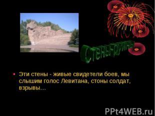 Эти стены - живые свидетели боев, мы слышим голос Левитана, стоны солдат, взрывы