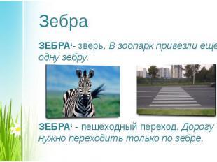 ЗЕБРА1- зверь. В зоопарк привезли еще одну зебру. ЗЕБРА1- зверь. В зоопарк приве