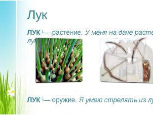 ЛУК1— растение. У меня на даче растет лук. ЛУК1— растение. У меня на