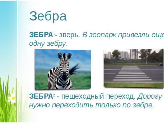 ЗЕБРА1- зверь. В зоопарк привезли еще одну зебру. ЗЕБРА1- зверь. В зоопарк привезли еще одну зебру. ЗЕБРА2 - пешеходный переход. Дорогу нужно переходить только по зебре.
