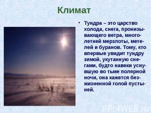 Тундра – это царство холода, снега, пронизы-вающего ветра, много-летней мерзлоты