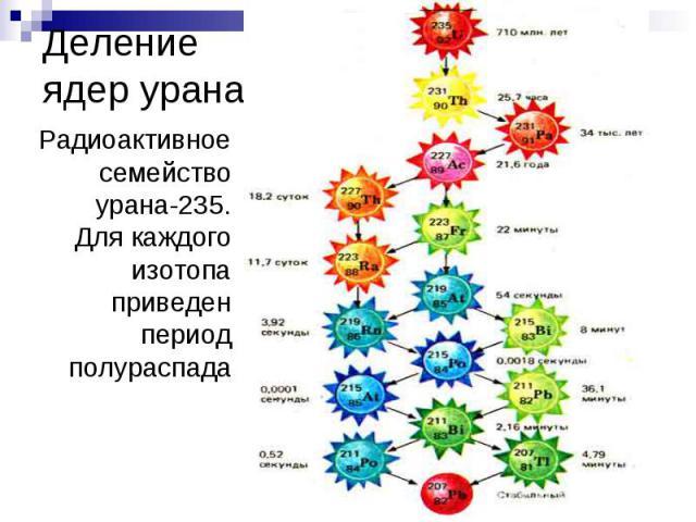 Деление ядер урана. Радиоактивное семейство урана-235. Для каждого изотопа приведен период полураспада
