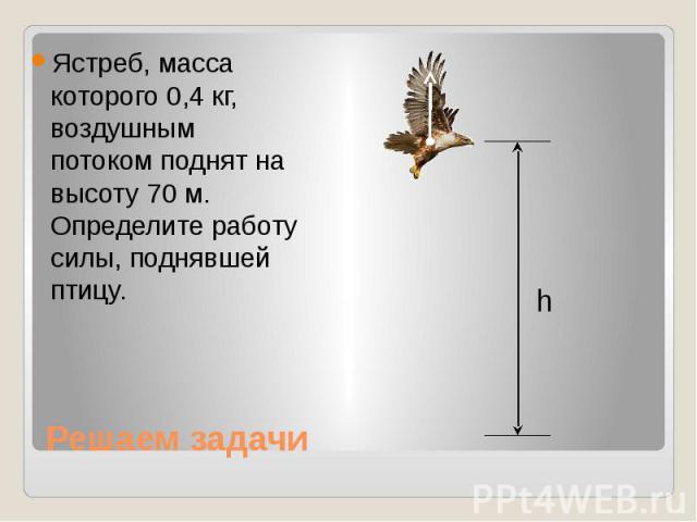 Решаем задачи Ястреб, масса которого 0,4 кг, воздушным потоком поднят на высоту 70 м. Определите работу силы, поднявшей птицу.