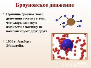 Причина броуновского движения состоит в том, что удары молекул жидкости о частиц