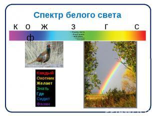 Спектр белого света