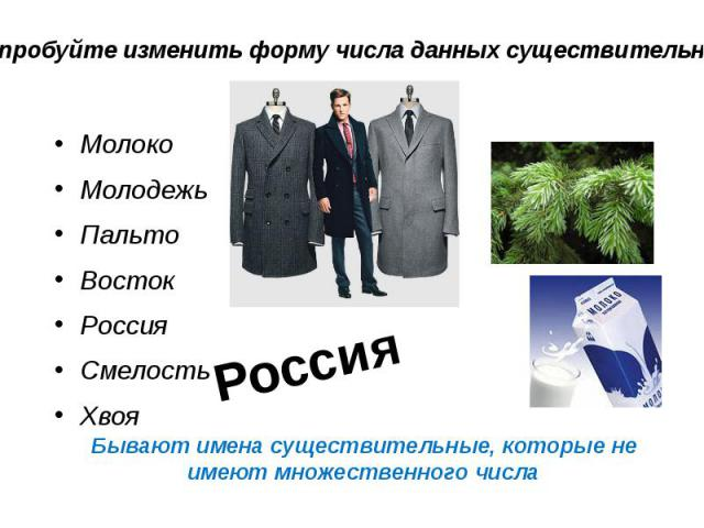 Бывают имена существительные, которые не имеют множественного числа Молоко Молодежь Пальто Восток Россия Смелость Хвоя