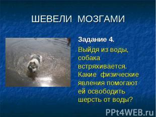 ШЕВЕЛИ МОЗГАМИ Задание 4. Выйдя из воды, собака встряхивается. Какие физические