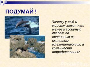 ПОДУМАЙ ! Почему у рыб и морских животных менее массивный скелет по сравнению со