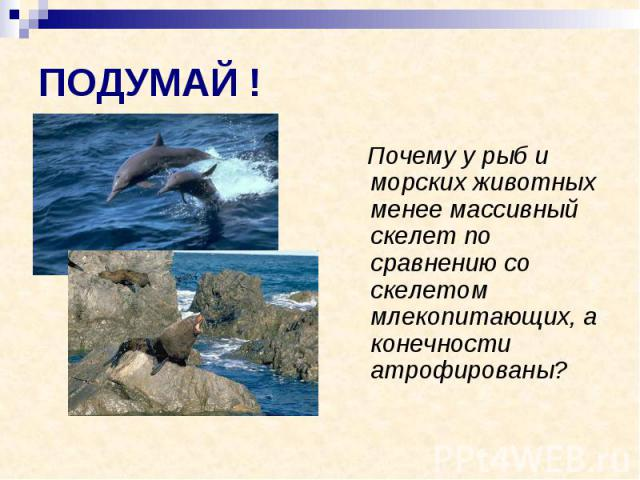 ПОДУМАЙ ! Почему у рыб и морских животных менее массивный скелет по сравнению со скелетом млекопитающих, а конечности атрофированы?