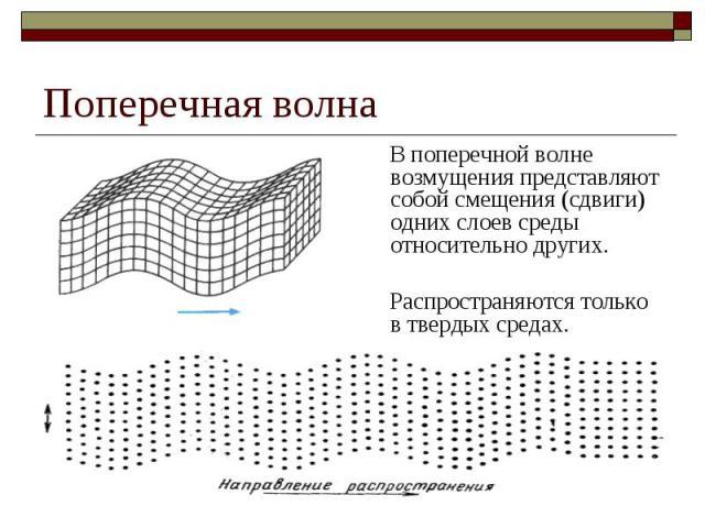Поперечная волна В поперечной волне возмущения представляют собой смещения (сдвиги) одних слоев среды относительно других. Распространяются только в твердых средах.