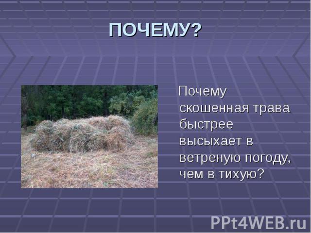 Почему скошенная трава быстрее высыхает в ветреную погоду, чем в тихую? Почему скошенная трава быстрее высыхает в ветреную погоду, чем в тихую?