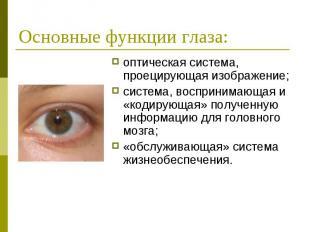 Основные функции глаза: оптическая система, проецирующая изображение; система, в