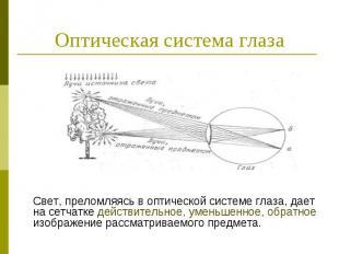 Оптическая система глаза Свет, преломляясь в оптической системе глаза, дает на с
