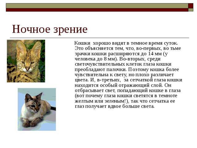 Ночное зрение Кошки хорошо видят в темное время суток. Это объясняется тем, что, во-первых, во тьме зрачки кошки расширяются до 14 мм (у человека до 8 мм). Во-вторых, среди светочувствительных клеток глаза кошки преобладают палочки. Поэт…