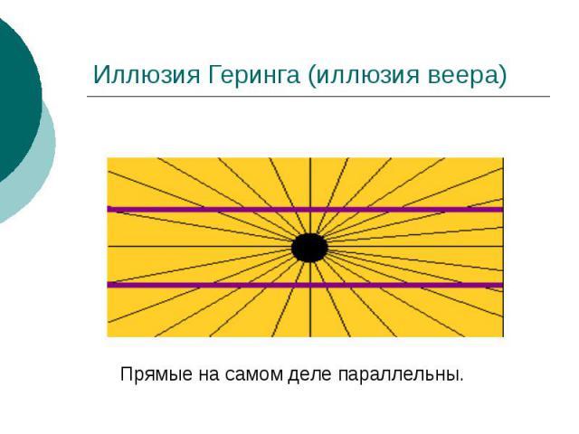 Иллюзия Геринга (иллюзия веера)