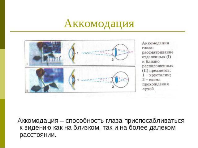 Аккомодация Аккомодация – способность глаза приспосабливаться к видению как на близком, так и на более далеком расстоянии.
