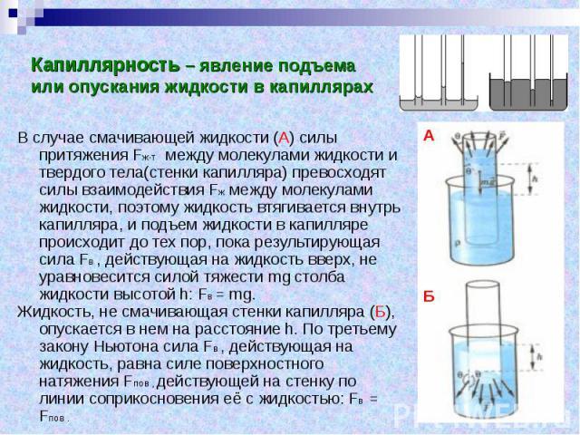 Капиллярность – явление подъема или опускания жидкости в капиллярах В случае смачивающей жидкости (А) силы притяжения Fж-т между молекулами жидкости и твердого тела(стенки капилляра) превосходят силы взаимодействия Fж между молекулами жидкости, поэт…