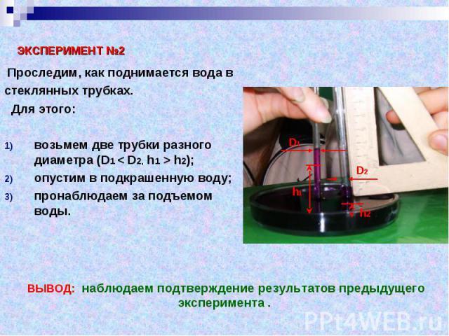 Проследим, как поднимается вода в Проследим, как поднимается вода в стеклянных трубках. Для этого: возьмем две трубки разного диаметра (D1 < D2, h1 > h2); опустим в подкрашенную воду; пронаблюдаем за подъемом воды.