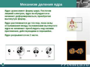Механизм деления ядра