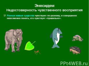 Энесидем Недостоверность чувственного восприятия Разные живые существа чувствуют