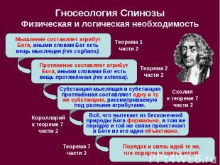 Гносеология Спинозы Физическая и логическая необходимость