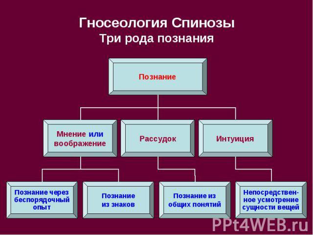Гносеология Спинозы Три рода познания