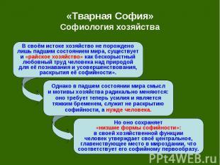 «Тварная София» Софиология хозяйства