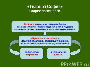 «Тварная София» Софиология пола