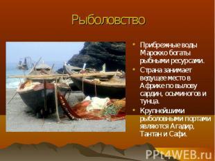 Прибрежные воды Марокко богаты рыбными ресурсами. Прибрежные воды Марокко богаты