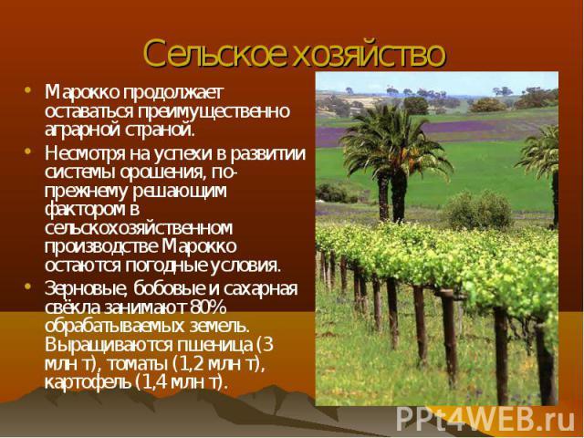 Марокко продолжает оставаться преимущественно аграрной страной. Марокко продолжает оставаться преимущественно аграрной страной. Несмотря на успехи в развитии системы орошения, по-прежнему решающим фактором в сельскохозяйственном производстве Марокко…