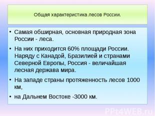 Общая характеристика лесов России. Самая обширная, основная природная зона Росси