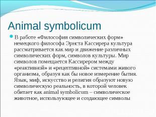 В работе «Философия символических форм» немецкого философа Эрнста Кассирера куль
