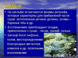 ШЕЛЬФ На шельфе встречаются формы рельефа, которые характерны для прибрежной час